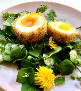 gebackenes Ei mit Wildkräutern