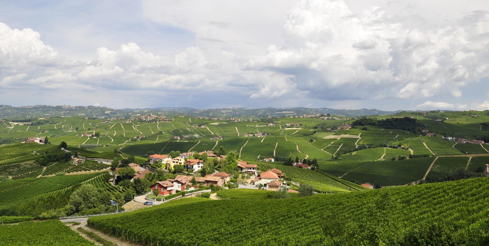 Landschaft von Langhe