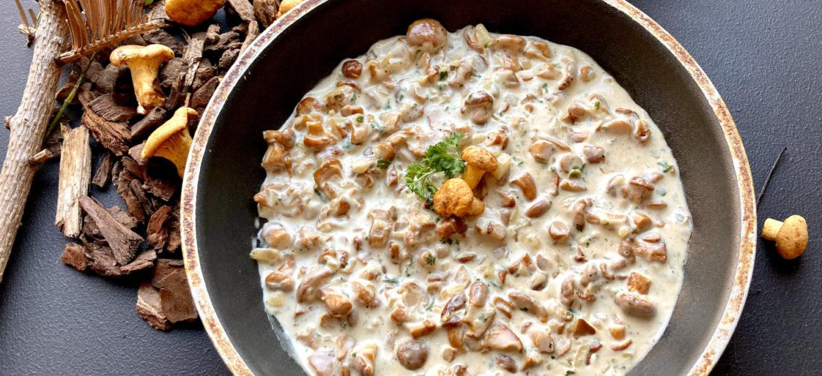 Pfifferlingsauce – köstliche Sauce mit Eierschwammerl